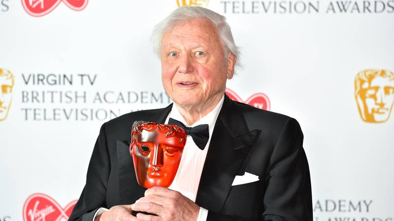 Here's How David Attenborough Has Shaped The World We Live In Today