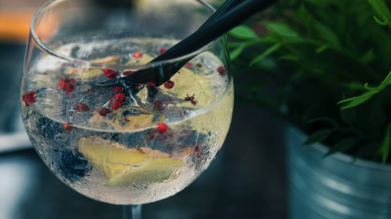 Gin Company Looking For Tasters To Be Paid In Free Bottles Of Gin