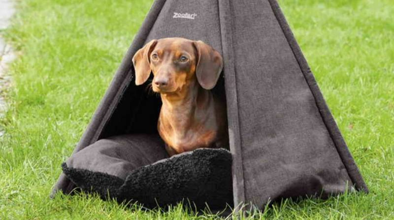 Lidl Is Selling Adorable Teepees For Your Dog