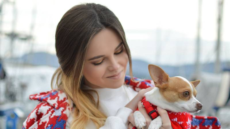 Science Says Dogs Obey Women More Than Men Because They're Furry Feminists